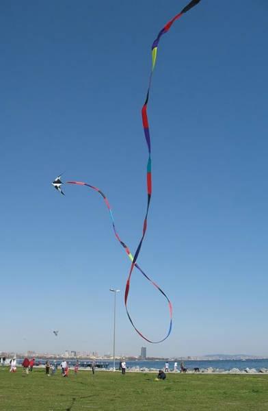 İki ipli uçurtmanın kuyruk gösterisi